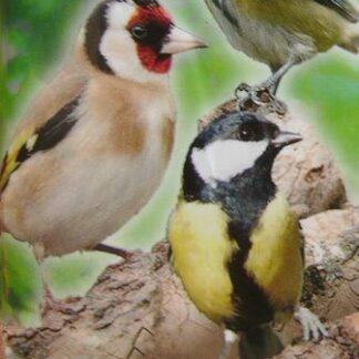 Mangeoires, nichoirs, graines pour oiseaux de la nature
